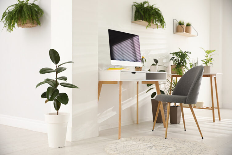 Home Office scandinavian style with green plants